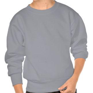 Harry Potter and Ron Weasely Pull Over Sweatshirt